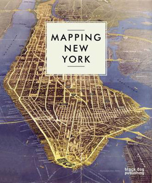 Picture of Mapping New York
