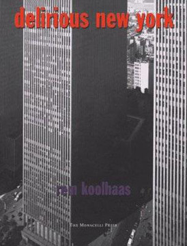 Picture of Delirious New York