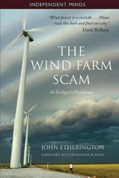 Picture of The Wind Farm Scam
