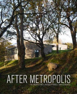 Picture of After Metropolis: The Architecture and Design of Powell Tuck Associates