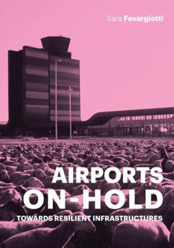 Picture of Airports on Hold